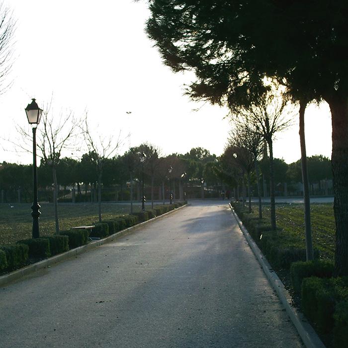 Camino_del_Camposanto-700x700
